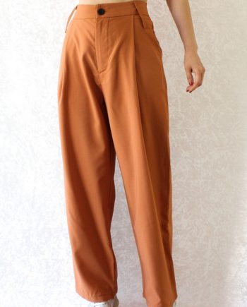 Basic suit pants N549